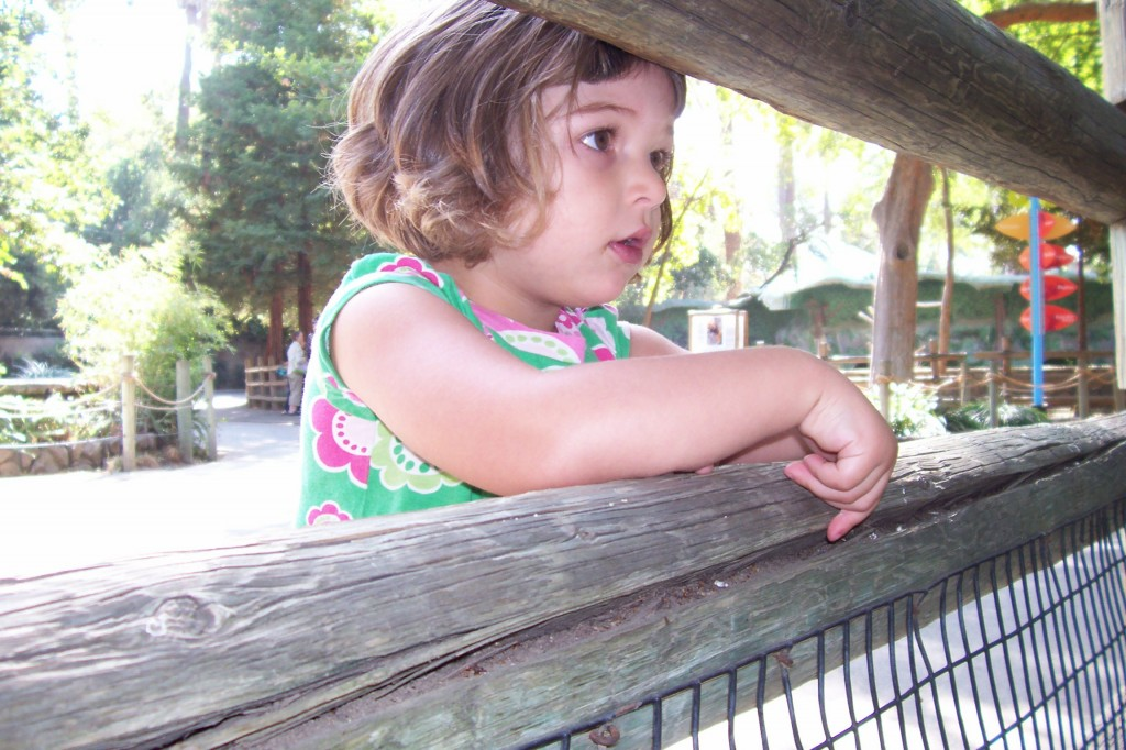 Wael's daughter Salma at the Fresno Zoo