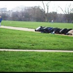 Muslims praying at a park
