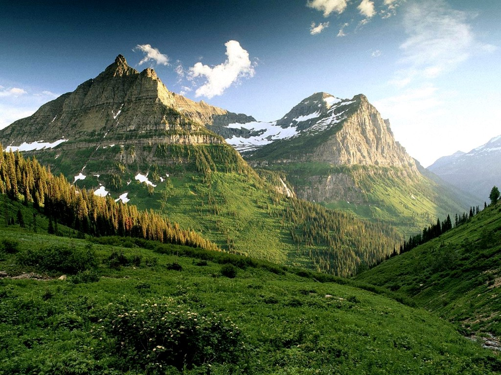 Beautiful mountains with snow and green trees