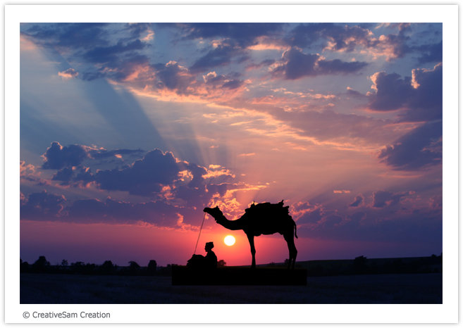 Man and his camel before the sunset