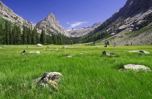 Big Wet Meadow in Cloud Canyon, Sequoia and Kings Canyon National Park.